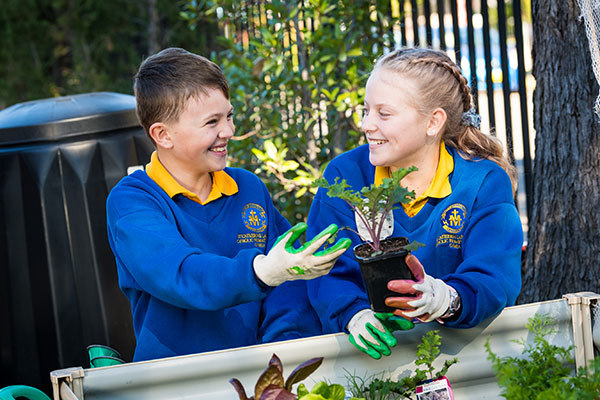 Students at St Catherine Labouré Catholic Primary School Gymea gardening
